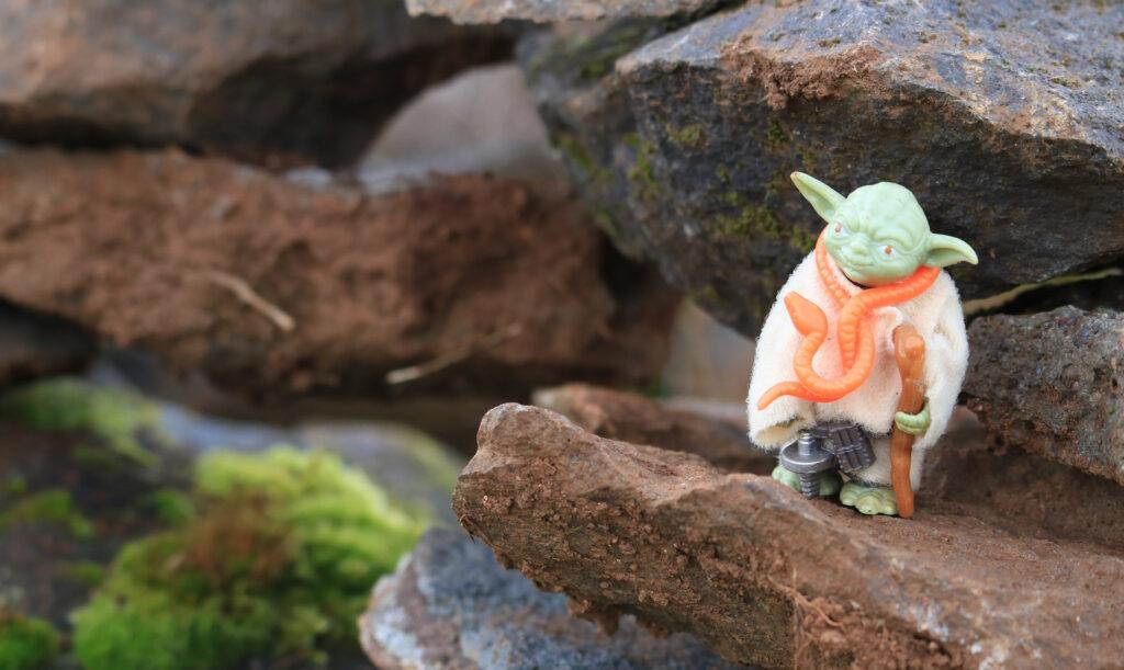 Die Macht sei mit dir Yoda, Mehr Energie durch das Coaching für Scanner